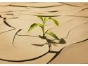 In timpul iernii, umiditatea din locuinte poate scădea și până sub 10%, fiind mai mică chiar decât în deșertul Sahara.