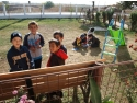 """spectacolul Umanitar. Campania umanitară """"Toamna se numără copiii"""""""
