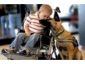 Peste 200.000 de europeni cer Regelui Belgiei să nu semneze legea eutanasierii copiilor