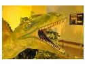 premiera mondiala. Dinozauri recent descoperiti, in premiera mondiala la Iasi