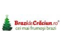 ajuta copii orfani. Felicitari realizate de orfani pentru clientii BrazideCraciun.ro !