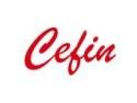 Cefin – Responsabilitate Socială Corporativă - De la teorie... la oameni