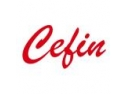 cefin. CEFIN HOLDING 2006 – 2010: STRATEGIE SI VIZIUNE IN DOMENIUL AUTOMOTIVE