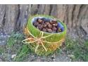 Nuci de sapun Sapindus Mukorossi
