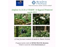 program divertiland. PROGRAM TURISTIC -Simfonie în ALB si VERDE în Regatul Primăverii...