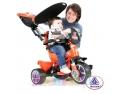 triciclete Puky. triciclete copii pe nichiduta.ro cea mai bogata gama de triciclete