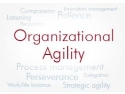 """Developing the Agile Organisation"". t Master Class. Linda Holbeche. 27 Iunie 2014"