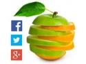 Cum imi promovez site-ul/afacerea in noul mediu online?