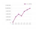 starshiners. Evolutie Cifra de Afaceri StarShinerS, 2008 - 2014