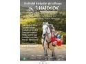 Haidook Summer Fest: show-urile ecvestre se întâlnesc față în față cu acrobațiile pe bicicletă, 21-23 iunie 2019 , com. Runcu, jud. Dâmbovița draft