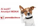 anunturi de angajare. Promotiiactive.ro: O noua platforma de anunturi gratuite