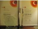 rent a car association. Victorie spectaculoasa a Romaniei la premiile International Project Management Association (IPMA)