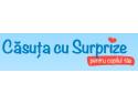 Logo Casuta cu Surprize