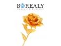 Borealy. Trandafir de Aur