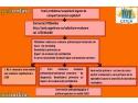 nivel radiatii. Lansarea PEDonline - prima platforma online de evaluare psihologica a copiilor si adolescentilor