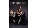 foto trupa Amadeus