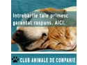 Club Animale de Companie