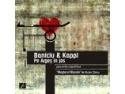 baniciu. Baniciu & Kappl - CD gratuit la concertul din 3 decembrie