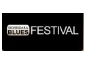 blues festival. Sighisoara Blues Festival - Editia 5