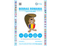 BEBRAS International Challenge, ECDL, Romania, programare creativa, computing, concurs, elevi, profesori, scoli