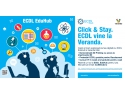 ECDL, Hub, EduHub, IT, copii, tineri, elevi, 3D Printing, 3D, imprimante 3D, cursuri copii, pretestari, BAC, digital