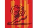cannes. Cannes Lions – o poveste tangibila pentru Tinara Romanie