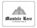 Muntele Athos. Certificat de Excelenta TripAdvisor pentru Pensiunea MUNTELE RECE