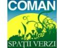 Amenajare spatii verzi – bucura-te de servicii premium oferite de Coman Spatii Verzi!
