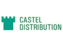 zwcad distribution. Castel Distribution- cablu date FTP