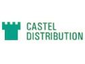 delao distribution. Castel Distribution, locul unde gasiti cablu FTP cu Sufa la preturi avantajoase!