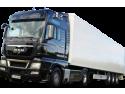 Mora Zf repara chiar si cutii viteze camioane!