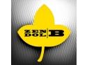 Zendol B- solutia eficienta pentru protectia lemnului furnizata de compania Biochem A