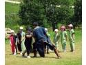 heraldica. O incursiune în timp: Tabăra Medievală pentru Copii