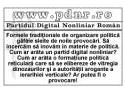 Lansarea Partidului Digital Nonliniar Roman