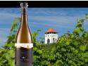 Castel Starmina Roze. Aur și Argint în 11 medalii, pentru Castel Vinum, cel mai tânăr producător de vinuri din România