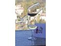 coperti reviste. Cele mai bune vinuri românești, medaliate de juriul revistei Vinul.Ro