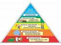 Evidențierea relației dintre teoria motivațională şi practica managerială este foarte importantă pentru practica managementului 25 august