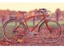 sanie cu volan. Romanul istet isi cumpara iarna  bicicleta si vara , sanie
