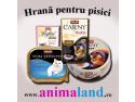 expozitie pisici. Hrana pentru pisici