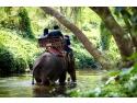Fii pe val ! Descopera Bali Indonezia cu agentia de turism Triptailor, specializata in vacante premium!