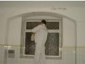 Eliminarea definitiva a mucegaiului de pe pereti cu tratamentul ecologic BioRid
