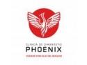tratament piatra. Noul Centru de Diagnostic si Tratament al Clinicii Phoenix se deschide in data de 12 Noiembrie 2009 la Piatra Neamt.