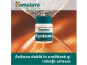infectii urinare. Cystone - Actiune dubla in urolitiaza si infectii urimare!