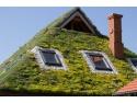 acoperis. Acoperis verde extensiv  - Solutii profesionale de la Odu Green Roof