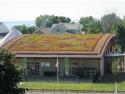 ferestre pentru acoperis terasa. Acoperis verde  - Odu.ro