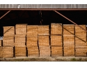 Pamirco - calitatea in productia de railway sleepers archivit