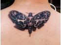 indepartare tatuaj. Tatuajul, o metoda ideala de invins teama
