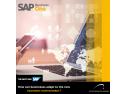 Vizual SAP B1