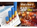 sistem ERP. SAP Business One