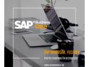 sap business one. ERP pentru companii in dezvoltare